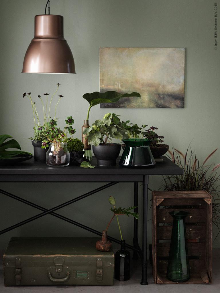 IKEA Livet Hemma - Mossig trend