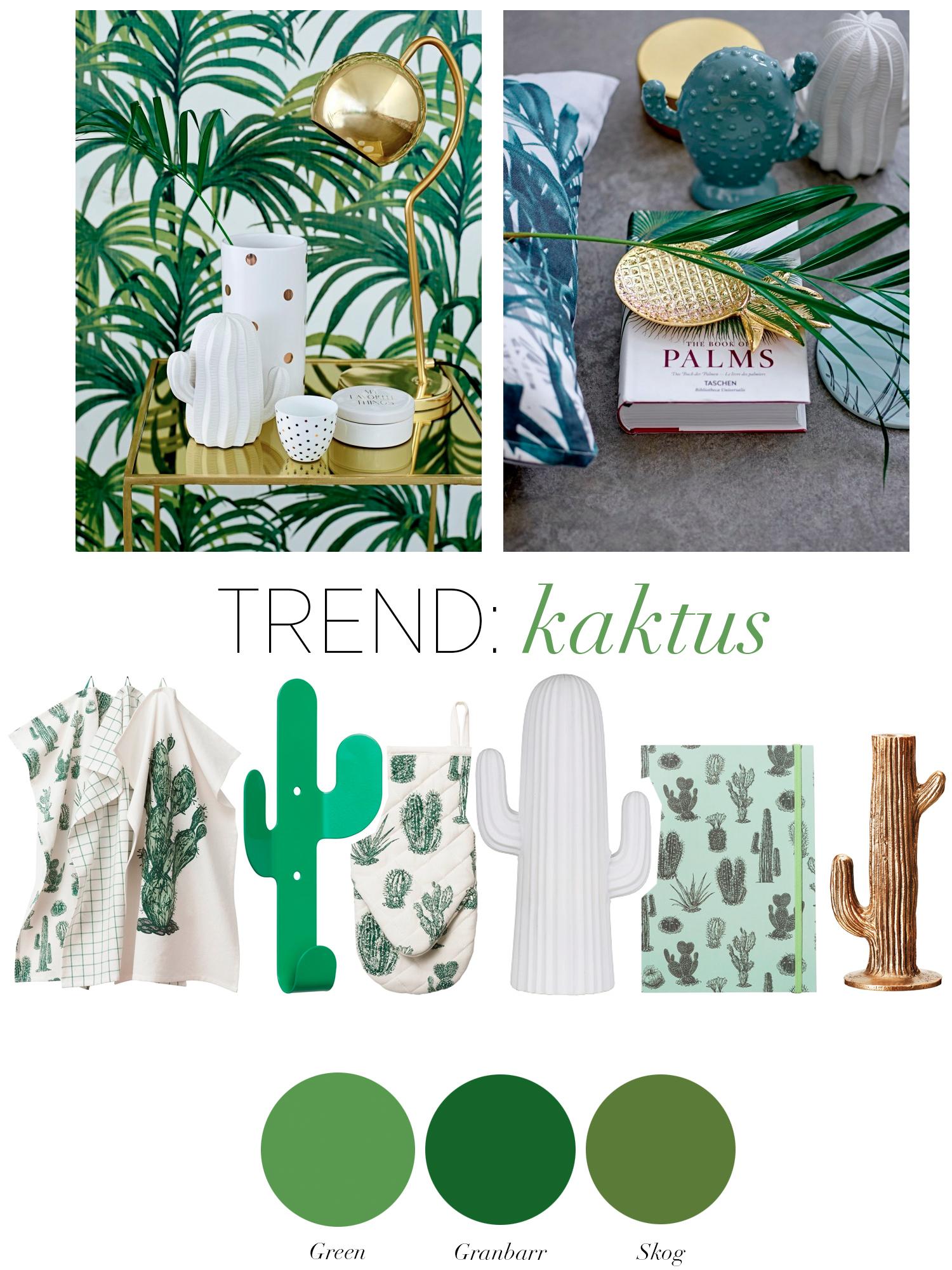 Trend: Kaktus - fixaodona.se