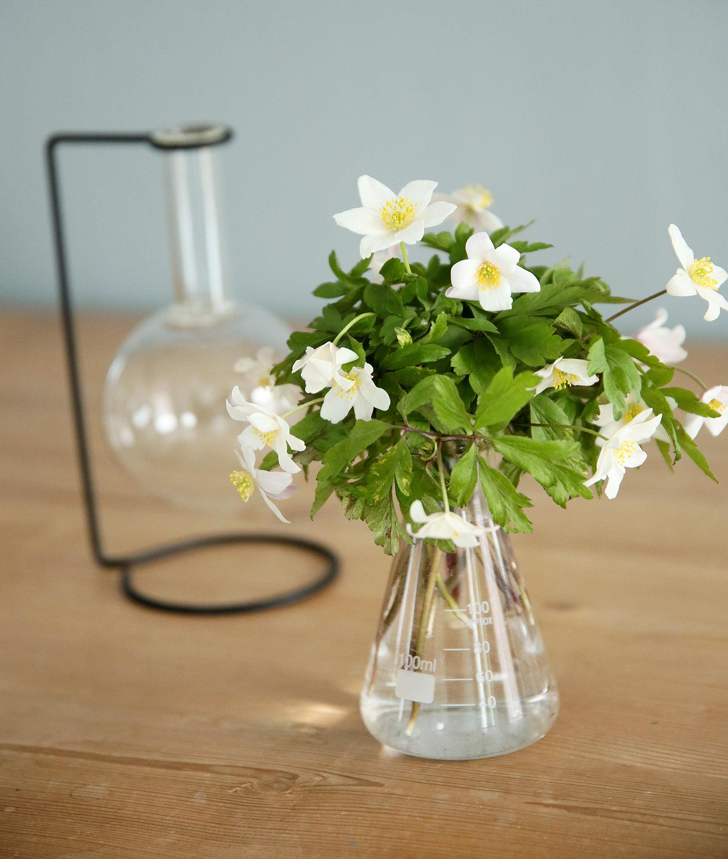 Vaser från Lagerhaus - fixaodona.se