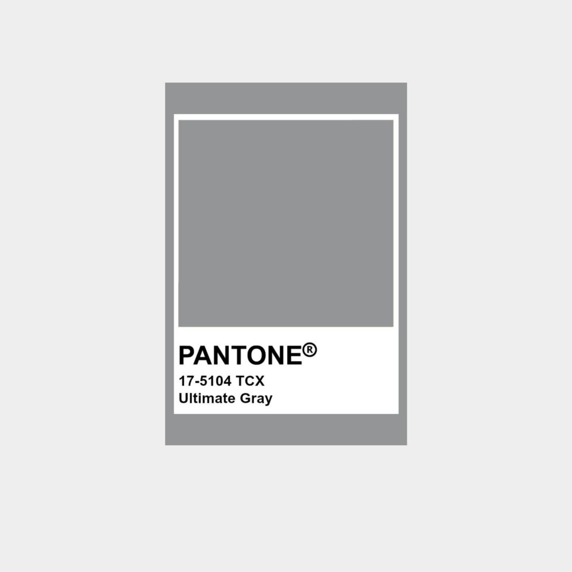 Pantone årets färg 2021 - Ultimate Gray 17-5104